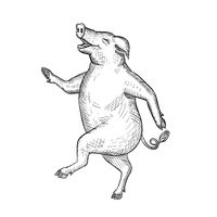 Happy Pig Dancing Drawing Retro Black and White