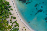 Drone shot of tropical beach