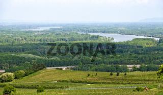 Blick vom Schiffberg bei Hollenburg auf die Weingärten und die Auwälder im Donautal