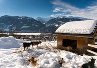 Maienfeld, GR, Switzerland - January 20, 2019: Maienfeld tourist attraction Heidi village in winter