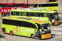 Bus terminal with Flixbusses
