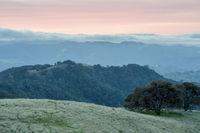 Fog rolling over Las Trampas Regional Wilderness as seen from BBQ Terrace Road in Mt Diablo.