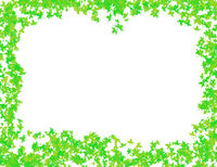 pattern picture green frame for decoration