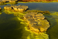 Mushroom-like sulphure rock formations, geothermal field of Dallol, Danakil depression, Ethiopia