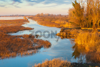 marshes of Comacchio at sunset