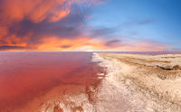 Sunset pink salty Syvash Lake, Ukraine