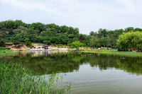 wolyeongji pond in seoul dream forest