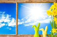 Window, Sunny Blue Sky, Easter Decoration And Narcissus Spring Flower