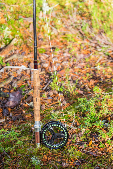Fishing rod standing on the ground