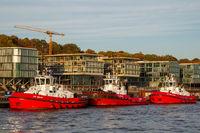 Tugboats in Hamburg
