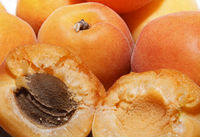 Ripe apricots close up