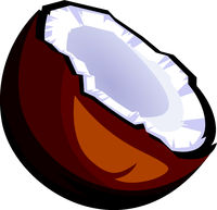 Brown coconut cut in half cartoon fruit vector illustration on white background.