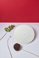White vinyl audio record and dry branches on a double white red background with copy space. Flat lay