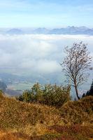 Bavarian Landscape 013. Germany