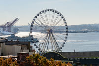 A ferry and waterwheel next to Elliott Bay in Seattle