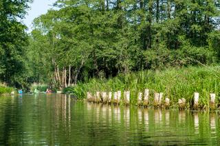 Spreewald Biosphärenreservat Urlaubsregion