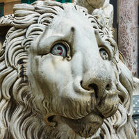 Marble lion in Genoa