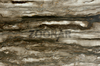 Real natural  ' Delicate Brown '  texture pattern. Background
