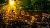 Sunshine on a stream