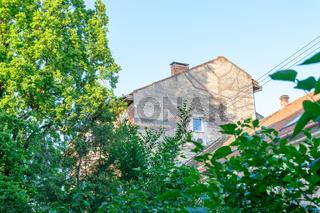 Green living in city, urban enviroment concept. Oradea, Romania