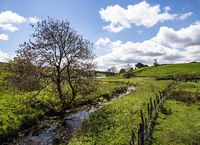 Yorkshire Dales - Hetton Common Beck