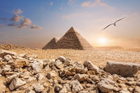The Pyramid of Chephren and the Pyramid of Cheops, beautiful noon view