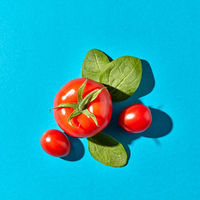 Food composition of red tomatoes and fresh spinach leaves on a blue background with copy space and shadows. Flat lay