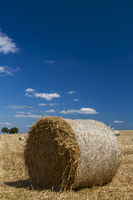 Straw bales on stubble field