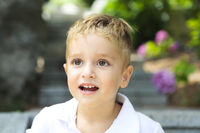 Cute little boy in the summer park