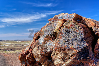 Close-up of Petrified Wood in Petrified Forest National Park