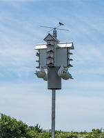 Multiple occupancy bird house or condo in state park