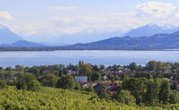 Lake Constance, landscape with Swiss mountains