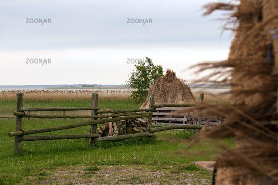 Landscape 011. Fischland Darss Zingst. Germany