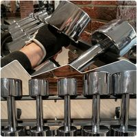 Steel Dumbbells In Gym Set