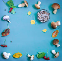 Marinated and fresh mushrooms on blue background.