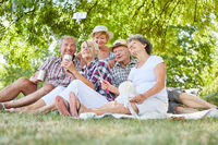 Gruppe Senioren im Park macht ein Selfie