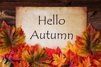 Old Paper With Text Hello Autumn, Colorful Leaves Decoration