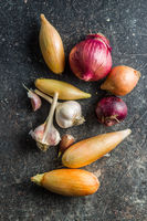 The golden shallot onion and garlic. Fresh bulbs