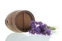 Wine barrel and Lavender on white background
