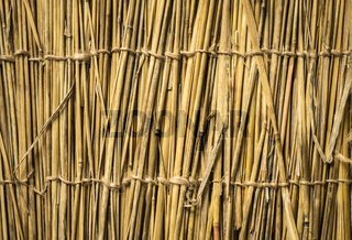 Highly detailed bamboo background. Perfect natural texture.