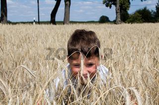 Kleiner Junge spielt im Getreidefeld