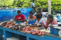 Fish mongers, fish market, Puerto Ayuro, Santa Cruz Island, Galapagos Islands, Ecuador