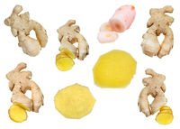 collage from fresh ginger and pickled galangal