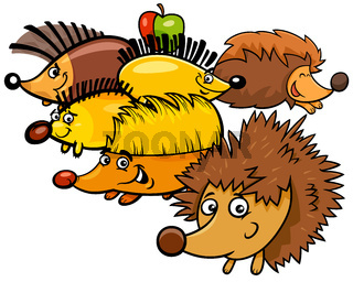Funny hedgehogs cartoon animal characters