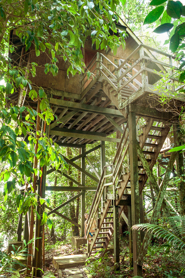 Ecotourism on Borneo in stilt bungalows that have been integrated into the existing rainforest in a