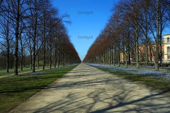 gentle avenue herrenhaeuser garden, hannover, germany