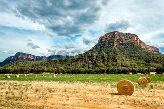 hay bales in fields in rural Australia