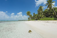 Dream beach of the Caribbean - Dominican Republic