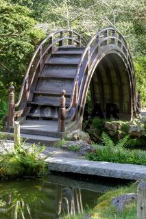 The Arched Drum Bridge in the Japanese Tea Garden in Golden Gate Park.