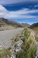 gravel road cutting through empty high alpine grasslands